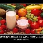 Вегетарианцы не едят животных