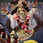 151 Фестиваль Садху-санга 2012