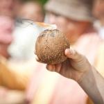 016 Ритуальный кокос