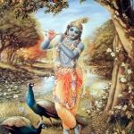 Кришна играет на флейте