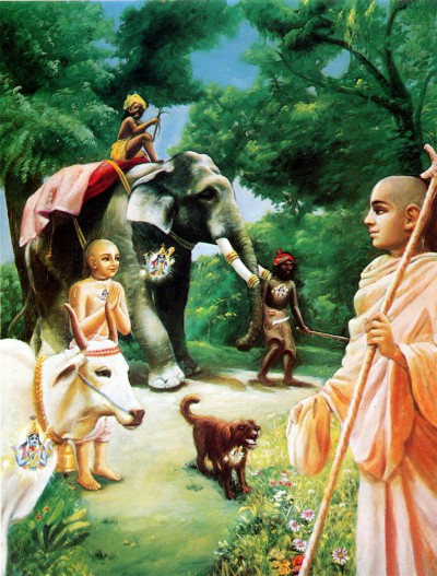 Смиренные мудрецы, одинаково смотрят на брахмана, корову, слона, собаку и собакоеда